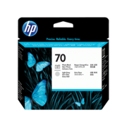 HP 70 Photo Black and Light Grey Printhead